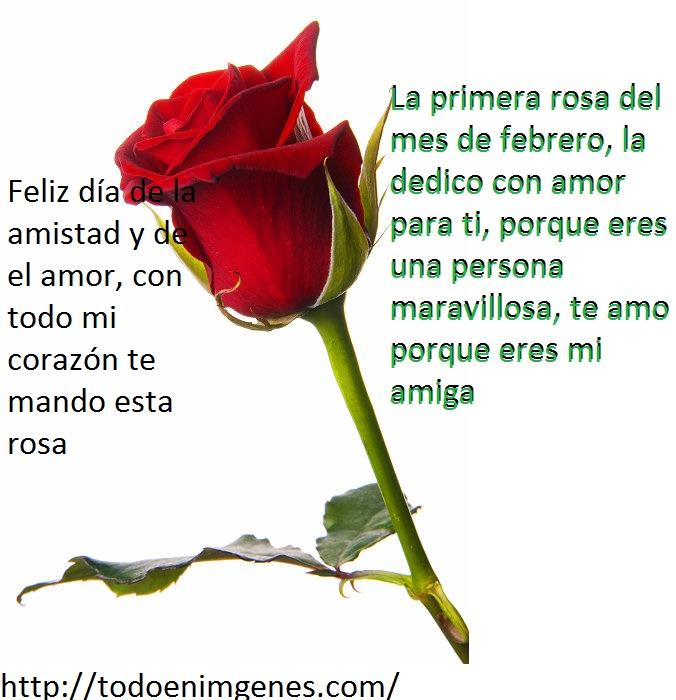 3800_2008-0006-valentine-red-rose