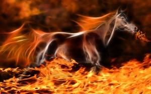 616451__black-fire-horse_p