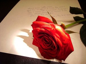 Consejos-románticos-e-ideas-con-rosas
