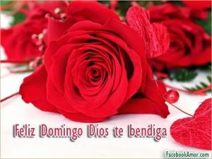 Feliz-domingo-rosas