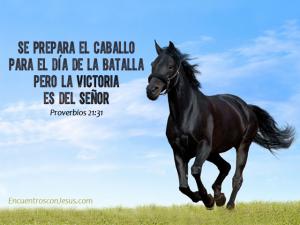 Se-prepara-el-caballo-640