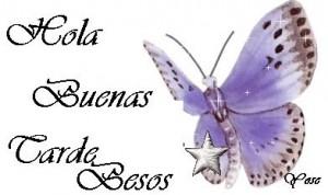 buenas-tardes13