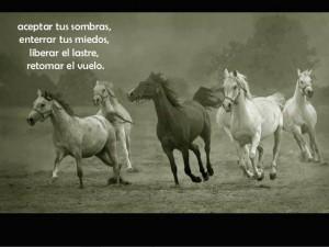 caballos-y-frases-3-638
