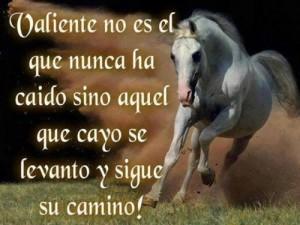 cabaloo