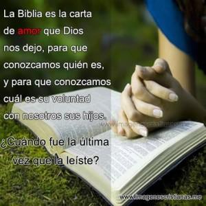 imagenes con frases de la biblia