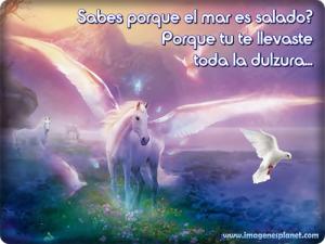 imagenes de caballos con frases de amor para facebook