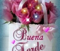Imágenes de rosas para decir buenas tardes