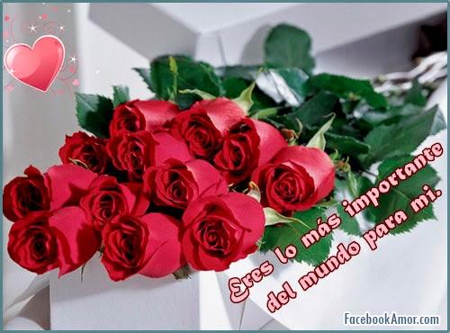 flores-romanticas-para-facebook