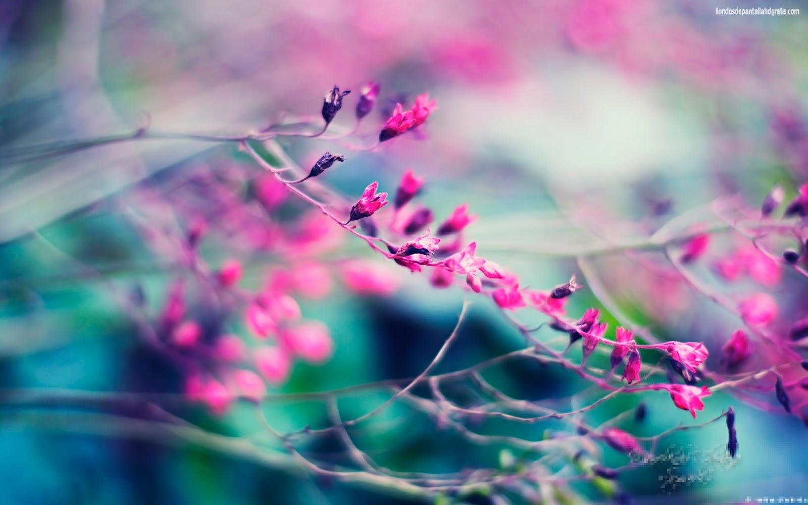 fondo-de-pantalla-de-flores-morada