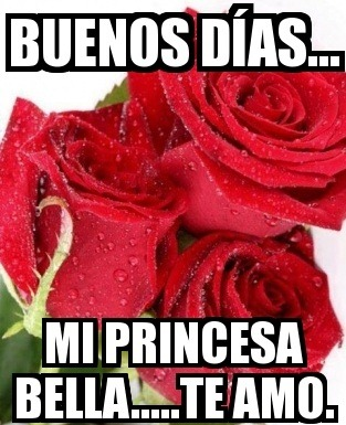 meme-buenos-dias-princesa