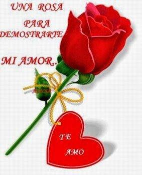 rosa-de-amor