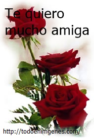 rosas para ti, amiga