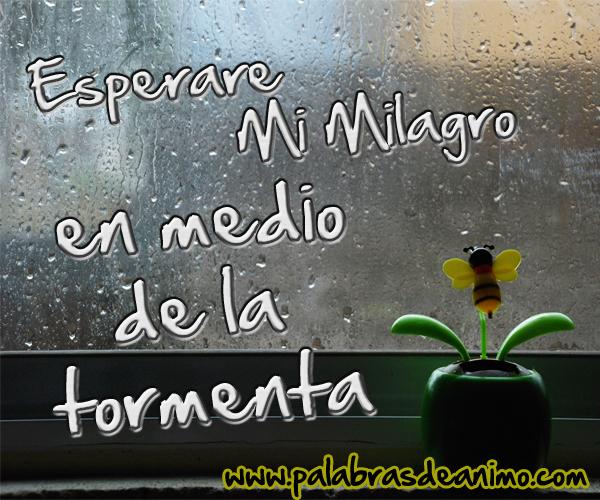 Esperare-mi-milagro-en-medio-de-la-tormenta