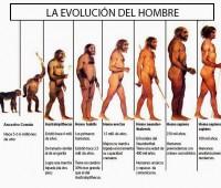 Imágenes de evolución humana