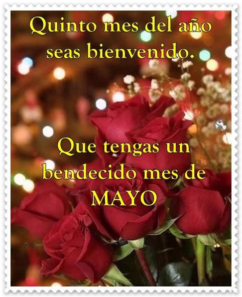 Bienvenido-Mayo-7