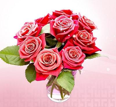 brillantes las rosas
