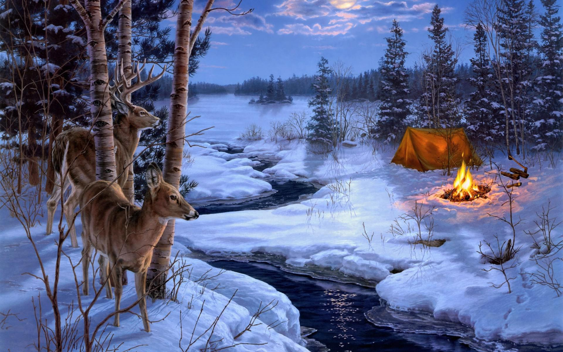 darrell-bush-moon-shadows-painting-winter-snow-animals-deer-for-desktop