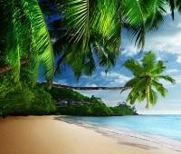 Paisajes en la playa