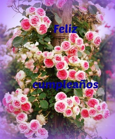 imagenes-de-flores-hermosas-para-cumpleanos-3