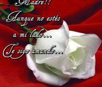 Imagenes De Feliz Cumpleanos Mama Descargar Imagenes Gratis