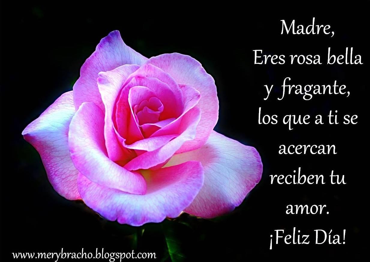 postal madre eres rosa bella