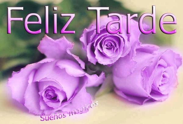 tarjetas-de-rosas-lilas-de-buenos-deseos