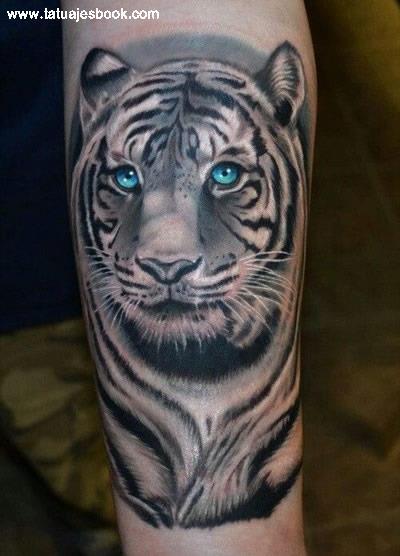 tatuajes-de-tigres-blancos-15
