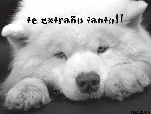 te-extrano_008