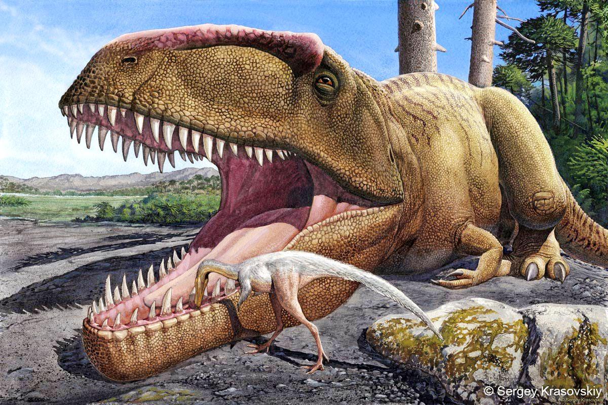 Dinosaurios_Simbiosis