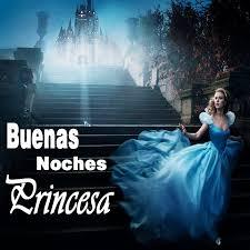 Imágenes de buenas noches princesa te amo 2
