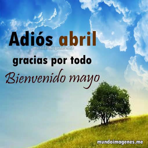 bienvenido-mayo3