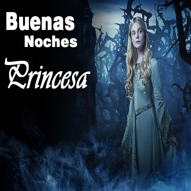 buenas-noches-princesa-imagenes-6