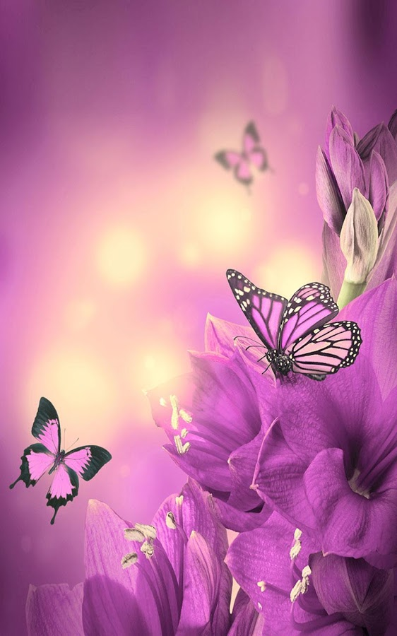 com.ButterflyLiveWallpaperHQ4
