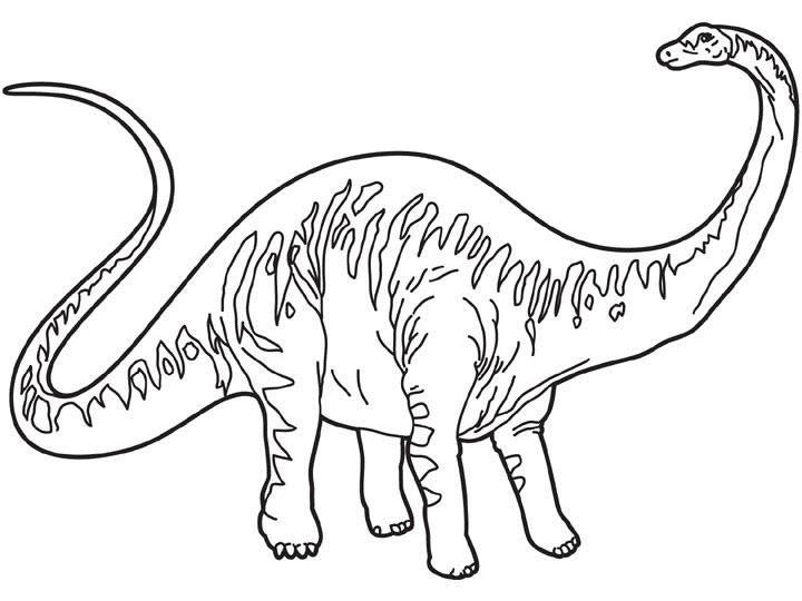 dinosaurio para colorerar de cuello largo