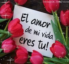 el amor de mi vida eres tu