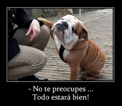 imagenes-chistosas-frases-para-facebook