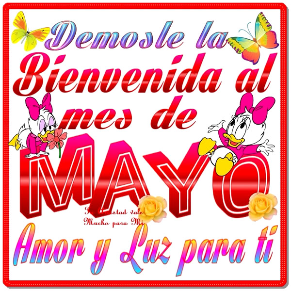 mayo_015