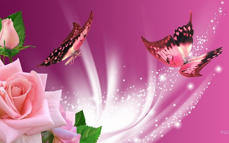 pink-butterflies-roses-images-67829