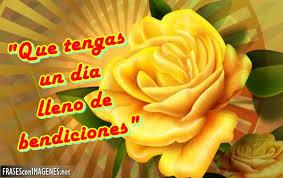 rosas amarillas con frases