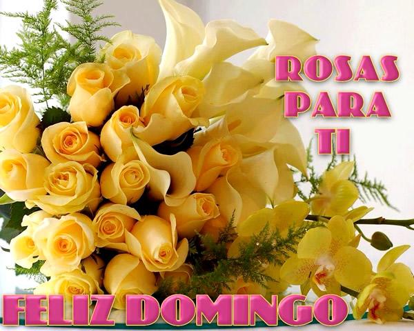 rosas amarillas feliz domingo