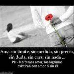 amor sin limites 7