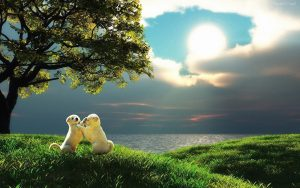 bellos paisajes con animales