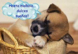 dulces sueños para todos 2