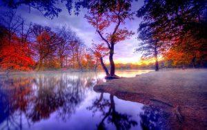 paisajes de la naturaleza en imágenes lindas