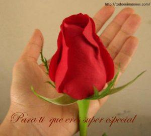 para ti con amor que eres super especial para mi