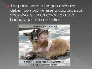 respeto-a-los-animales-2-638