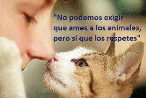 respeto a los animales