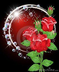 lindas rosas para cumpleaños