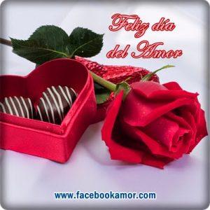 rosas-bonitas-rojas-para-perfil-de-facebook