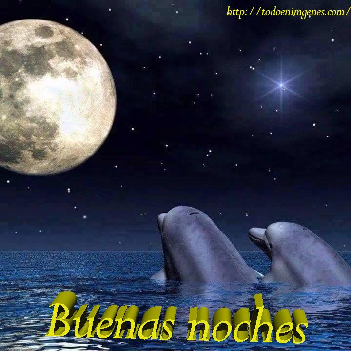 te deseo unas buenas noches.